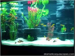 Dramatic Aquascapes Dramatic Aquascapes Diy Aquarium Background Kodey Turner In