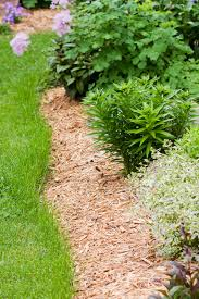 How To Mulch Flower Beds 5 Ways To Use Wood Chips Dr U0027s Country Life Blog