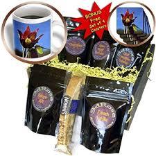 Gift Baskets San Diego Cheap Chocolate Coffee Gift Basket Find Chocolate Coffee Gift