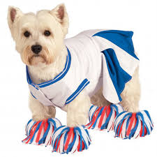 Cheer Halloween Costumes Rubie U0027s Cheerleader Halloween Dog Costume Blue
