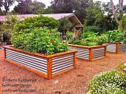 raised garden beds for sale best raised vegetable garden beds financeintl club