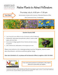free native plants allegany county vegetable gardening classes and events
