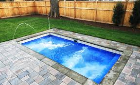 Backyard Leisure Pools by Leisure Pools The Palladium Plunge Encyclopedia Of Pools