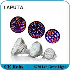 1000 watt led grow light reviews e27 30w 50w 80w full spectrum led grow lights smd5730 led lights