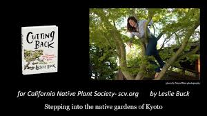 california native plant garden design aesthetic pruning and design for the native garden youtube