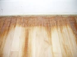 How Do You Polyurethane Hardwood Floors - process of sanding your hardwood floors mn