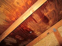 7 unexpected dangers of a leaky roof angie u0027s list