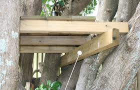 build a treehouse with holiday projects