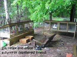 our homestead farm youtube