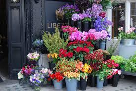 flower shop flower shop professional pages