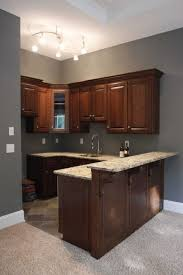 basement kitchen design wonder if the higher counter would work on the concession atand