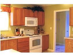 Kitchen Paint Colors With Light Oak Cabinets Paint Colors For Kitchen Cabinets Wall Colors Kitchen Paint Colors