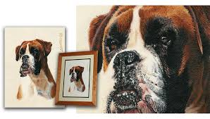 boxer dog yorkshire dog portraits in pastel pencil u0026 oils by andrew howard u0027s