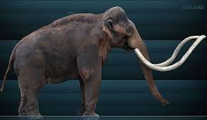 dinosaurs prehistoric animals nebraska