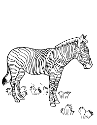 coloring pages animals