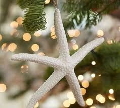 Beach Christmas Tree Topper - 123 best christmas beachy images on pinterest nautical christmas