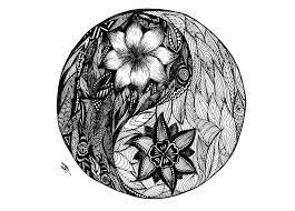 yin yang by etherlemon on deviantart