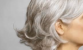 Bob Frisuren Graue Haare by Graue Haare Verringerung Oder Beseitigung Grauen Haaren