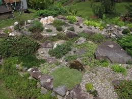 Garden Rock Front Yard 36 Shocking Rock Garden Photos Ideas Front Yard