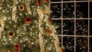 when do you put up your christmas tree lifehacker australia