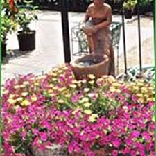 Houston Urban Gardeners - the urban gardener closed nurseries u0026 gardening 347 blvd se