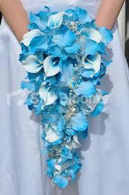 Wedding Flowers Blue And White Beautiful Vanda Orchids Vanda Orchids Pinterest Vanda Orchids