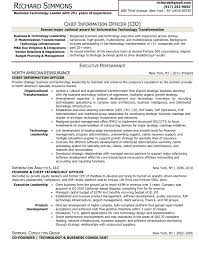 Business Consultant Sample Resume by Sample Résumé Chief Information Officer Executive Resume Writer