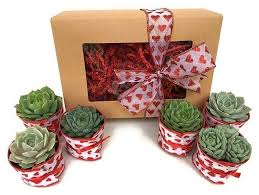 Mother S Day Gift Basket 13 Mother U0027s Day Gift Baskets To Spoil Your Leading Lady Brit Co