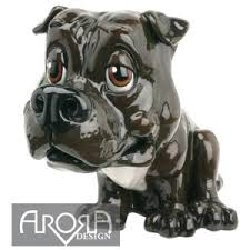 staffordshire bull terrier paws staffy dogs