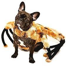Halloween Pet Costume Amazon Zack U0026 Zoey Fuzzy Tarantula Costume Dogs 20