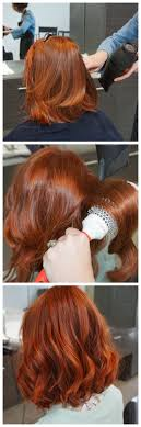 ginger hair color at home 7 best hair images on pinterest auburn hair red hair and redheads