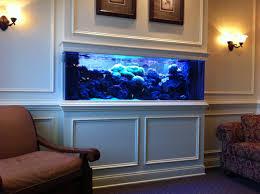 20 of the coolest wall fish tank designs tank design fish tanks