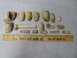 clay pipes from the jason russell house archaeological dig march