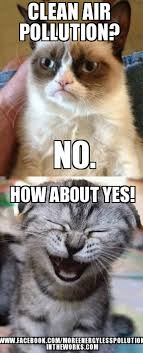 Grumpy Cat Meme Happy - grumpy cat vs happy cat clean air pollution no how about yes