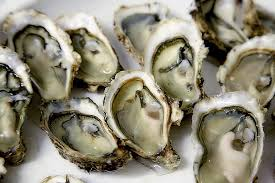 best oysters in cape cod oysters and other cape cod classics nevr