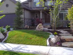 trees for front yard design with flowering trees on pinterest