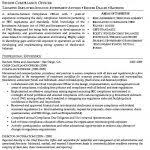Compliance Officer Resume Sample by New Police Officer Resume Best Resume Example