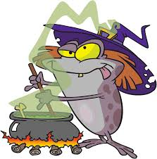 frog witch frog witch u0027s familiar pinterest frogs