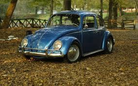 classic volkswagen beetle wallpaper car park leaves autumn classic oldtimer beetle volkswagen