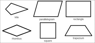 know your 2d shapes identify quadrilaterals worksheet edplace