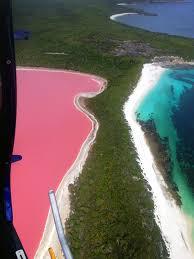 Pink Lake The Pink Lake Lake Hillier Middle Island Wa On Behance