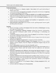 It Business Analyst Resume Sample by Business Analyst Resume Doc India Contegri Com
