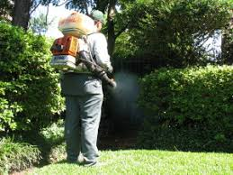 Mosquito Spray For Backyard by Mosquito Control Yard U0026 Lawn Spraying Dirks Pest Management