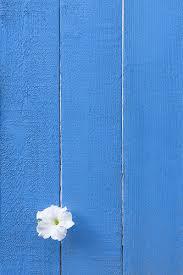 madwickedawesome colour blue u0026 white pinterest wallpaper