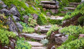 How To Build A Rock Garden How To Build A Rockery The Garden