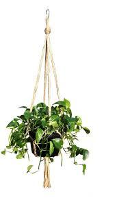 amazon com hanging basket plant hanger holders large for indoor