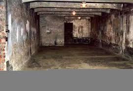 les chambres à gaz chambre à gaz la seconde guerre mondial