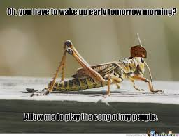 Jiminy Cricket Meme - scumbag cricket by kuhlman94 meme center