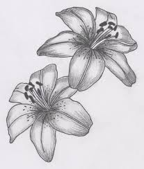 Flower Drawings Black And White - 4584 best flores images on pinterest drawings crafts and fabric