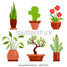 home plants download free vector art stock graphics u0026 images